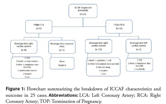interventional-cardiology-summarizing