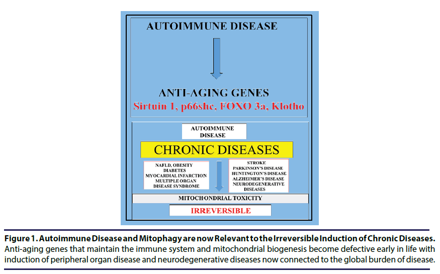 chronic-diseases-immune-system
