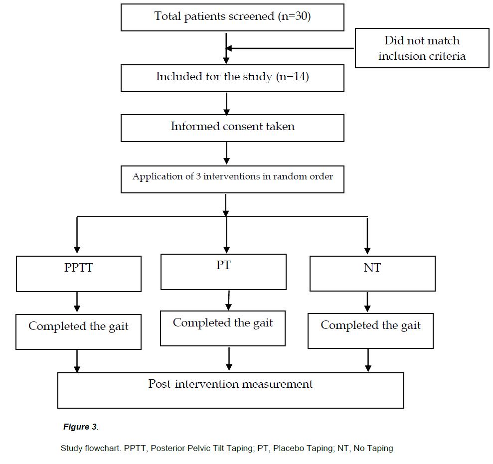 experimental-stroke-translational-medicine-Study-flowchart