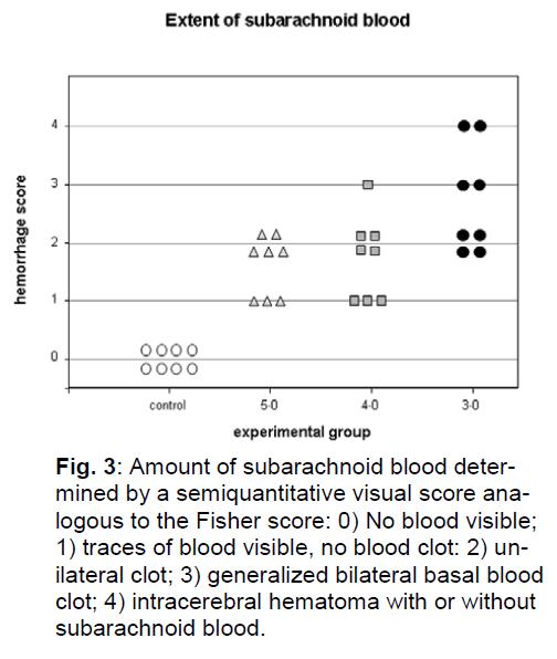 experimental-stroke-translational-medicine-subarachnoid-blood