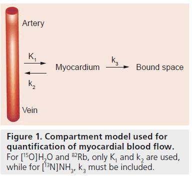 imaging-in-medicine-Compartment-model