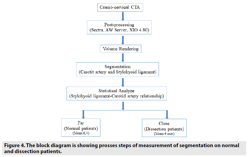imaging-in-medicine-block-diagram