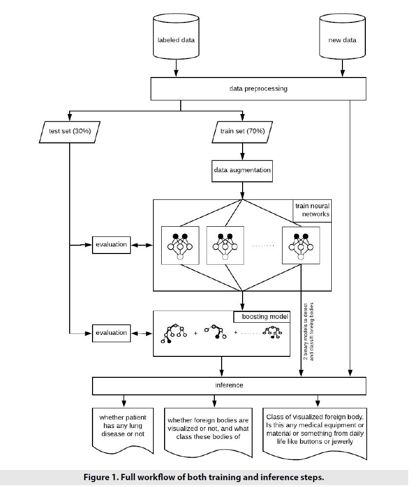 imaging-in-medicine-inference-steps