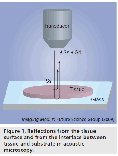 imaging-in-medicine-substrate-acoustic