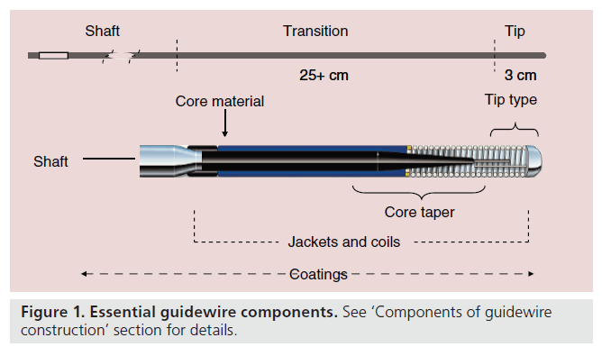 Guid Wire   Coronary Guidewires For Chronic Total Occlusion Procedures Function