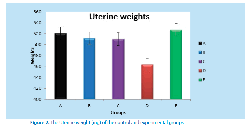 pharmaceutical-bioprocessing-Uterine-weight