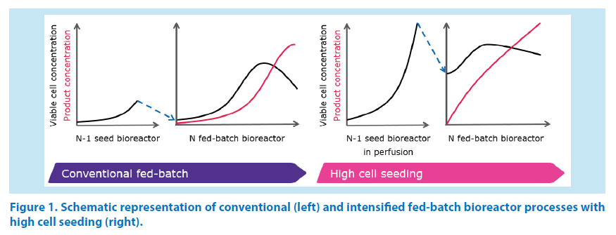 pharmaceutical-bioprocessing-cell-seeding