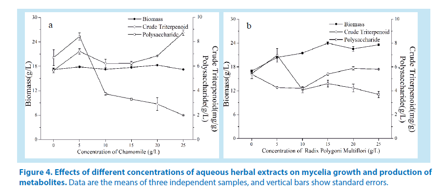 pharmaceutical-bioprocessing-mycelia-growth